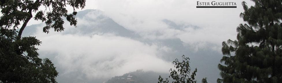 Hacia el Valle de Phobjikha