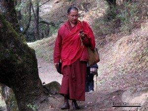 Thimphu, Templos