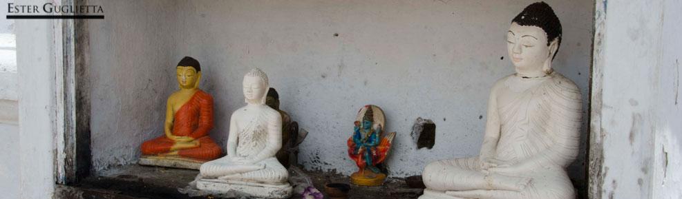 Anuradhapura – Polonnaruwa