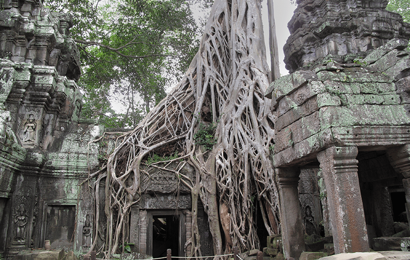 Siem Reap templos