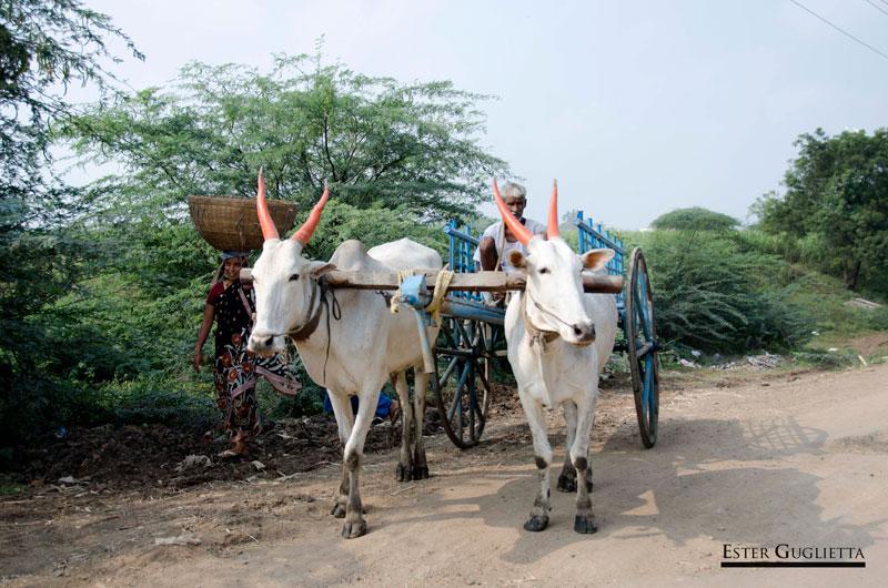 La India, Karnataka, Aihole