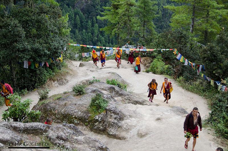 Monjes subiendo al templo