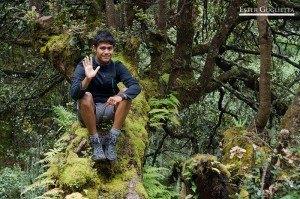 Sentado en un árbol