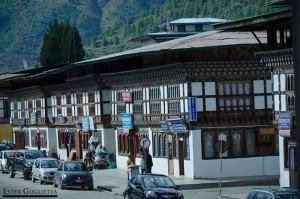 Casas en la calle principal