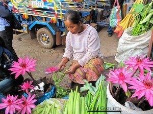 Flores para ofrendas