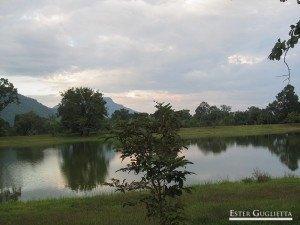 Laguna en el Wat Phu