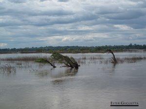 Islas del río Mekong