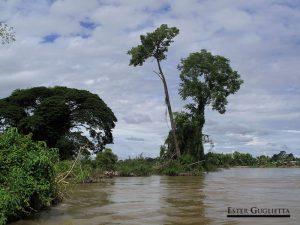 Paisaje del Río Mekong