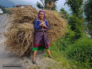 Mujer cargando forraje para los animales