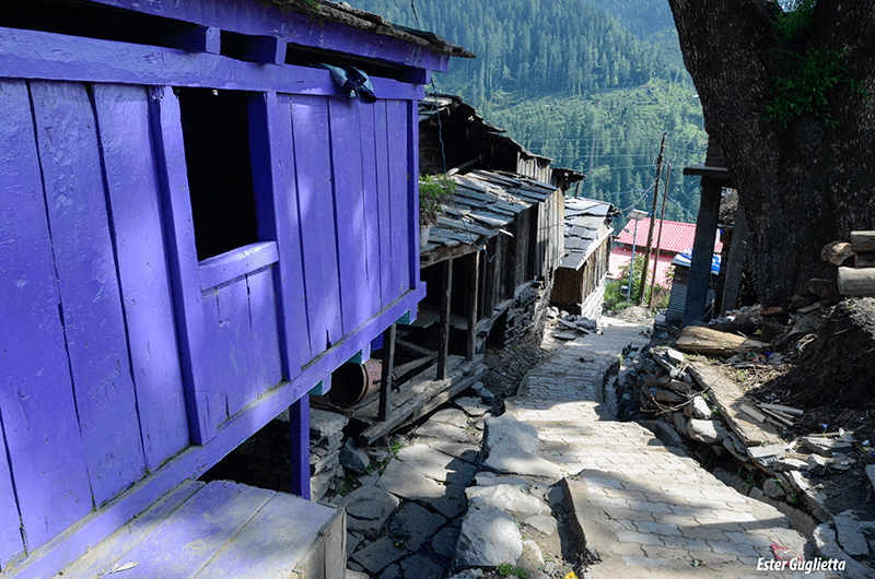 Jana Village