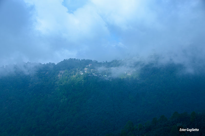 Punjab, Himachal Pradesh