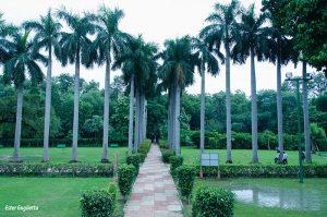 Delhi, Jardines Lodhi