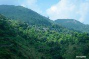 Bamana, Uttarakhand